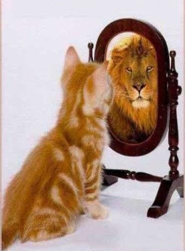 Effet miroir manipulateurs pervers narcissiques for Photo effet miroir